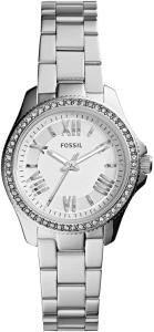 ساعت مچی فسیل  زنانه مدل AM4576